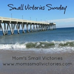 Small Victories Sunday {7} – The One Where We Make a Comeback