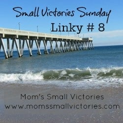 Small Victories Sunday Linky {8} – The One Where We Bust The Good Mother Myth