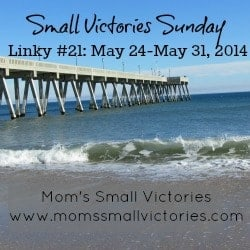 small-victories-sunday-linky-21