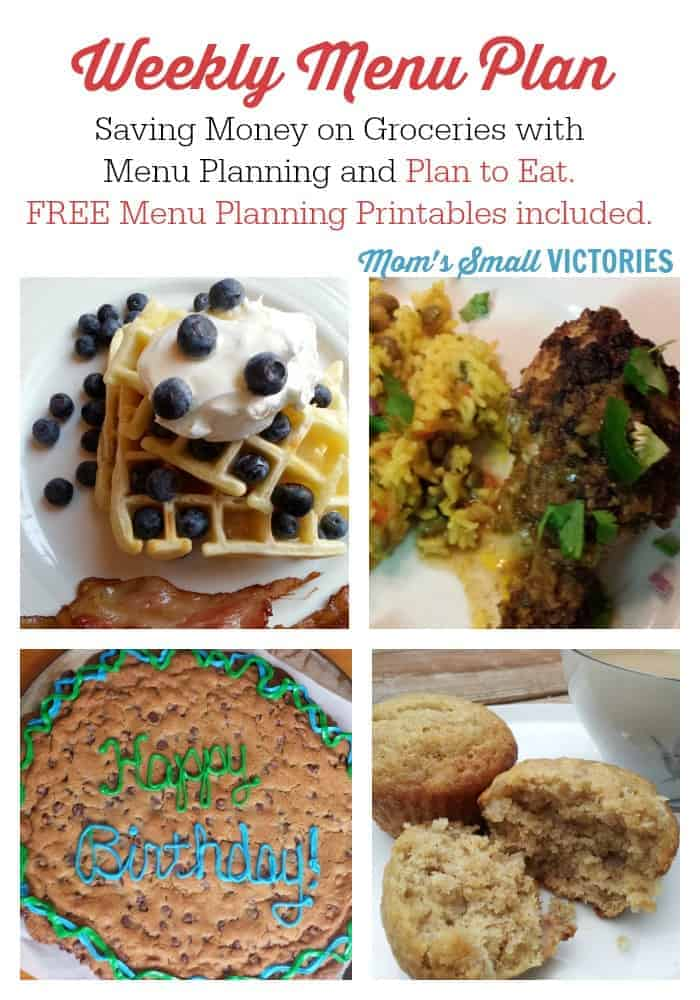 Menu Planning helps me cook healthy, delicious meals for our family and saves us a ton of money on groceries. Check out what's cookin' this week!