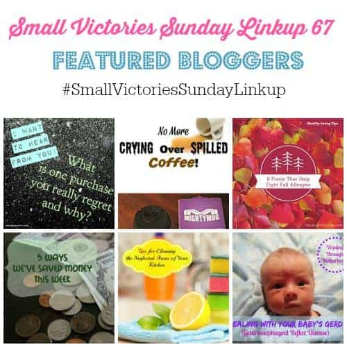 Small Victories Sunday Linkup 67 Featured Bloggers were What's A Purchase You Regret, a Mighty Mug Giveaway, 9 Ways to Fight Fall Allergies + Recipe, 5 Ways We Saved in August, Tips for Cleaning The Neglected Areas in Your Kitchen and Dealing with Your Baby's GERD
