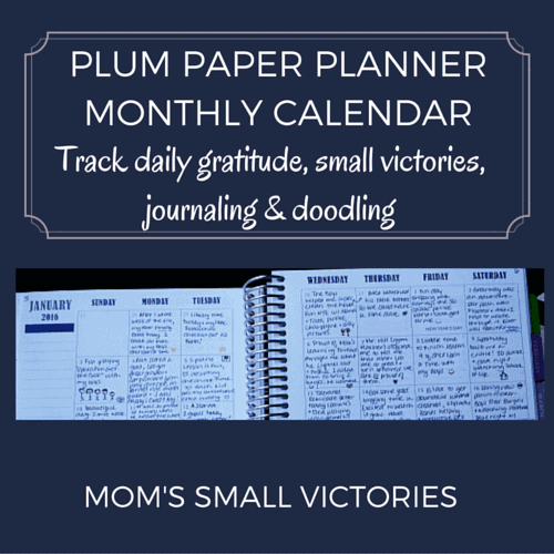 Plum Paper Planner Monthly Calendar. I use mine to track daily gratitude, small victories and a little doodling.