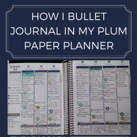How To Bullet Journal In A Planner