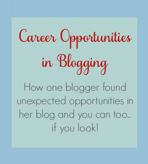 Be Our Guest Fridays {43}: Career Opportunities in Blogging from The Book Wheel