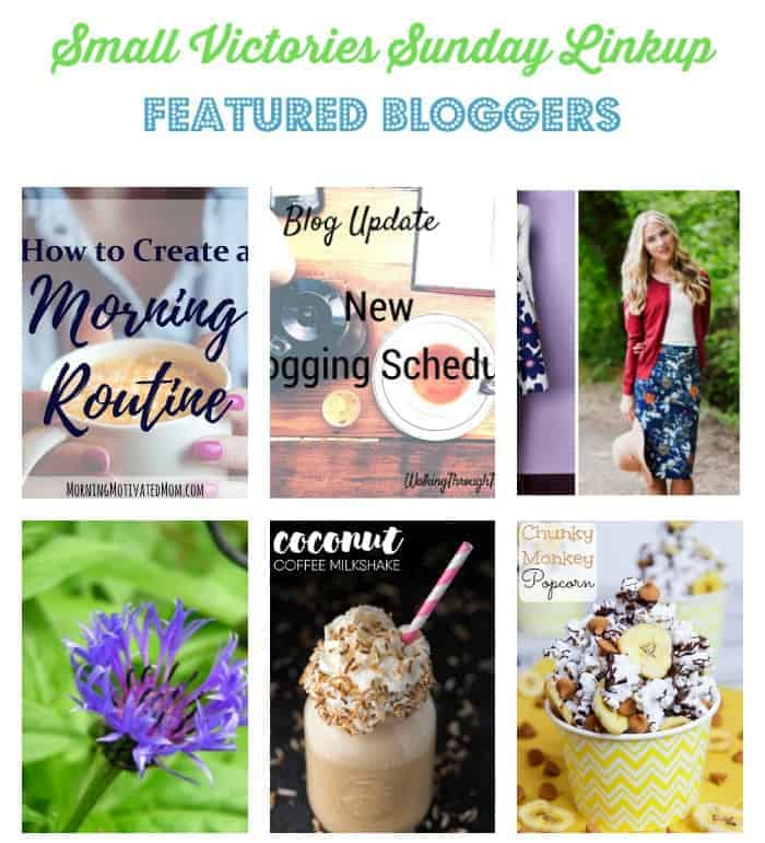 Small Victories Sunday Linkup {113}