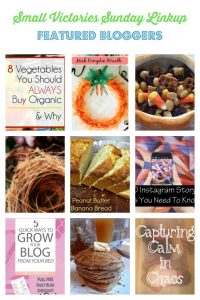 Small Victories Sunday Linkup 121 Featured Bloggers: 8 Vegetables You Should Always Buy Organic & Why from Carly on Purpose, How to Make a Mesh Pumpkin Wreath in 5 Easy Steps from Dazzled While Frazzled, Perfect Fall Snack Mix from Daily Momtivity, What I Do for Self Care from A Life Well Red, Peanut Butter Banana Bread from Tumbleweed Contessa, 5 Quick Ways to Grow Your Blog from Your Bed from Sweetly Sparta, 10 Instagram Story Tips You Need to Know from Girl XOXO, Apple Cider Pancakes from O Taste and See, Capturing Calm in Chaos from Ordinarily Extraordinary Mom