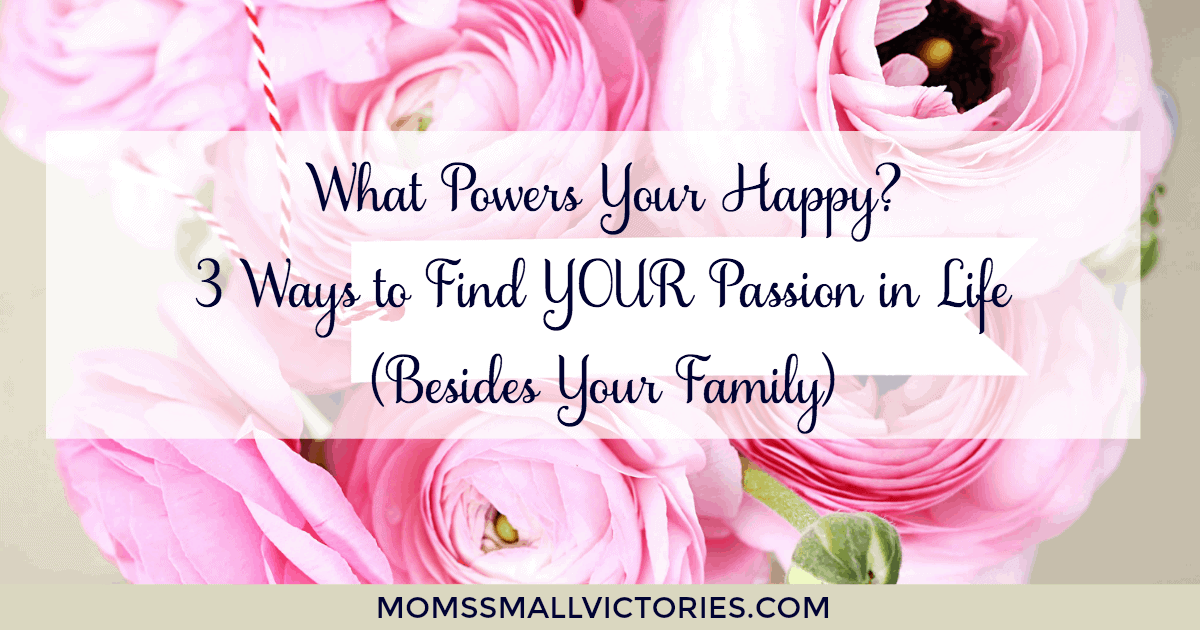 What Powers Your Happy? 3 Ways to Find YOUR Passion in Life (Besides Your Family). As busy moms, we often put our family's needs first and lose sight of what we are passionate about. Use these tips to unlock your passion in life and become a happier and healthier center of your family.