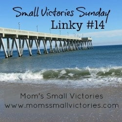 small victories sunday linky 14