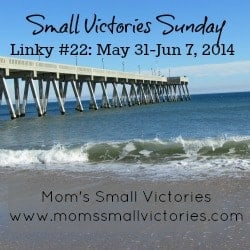 small-victories-sunday-linky-22