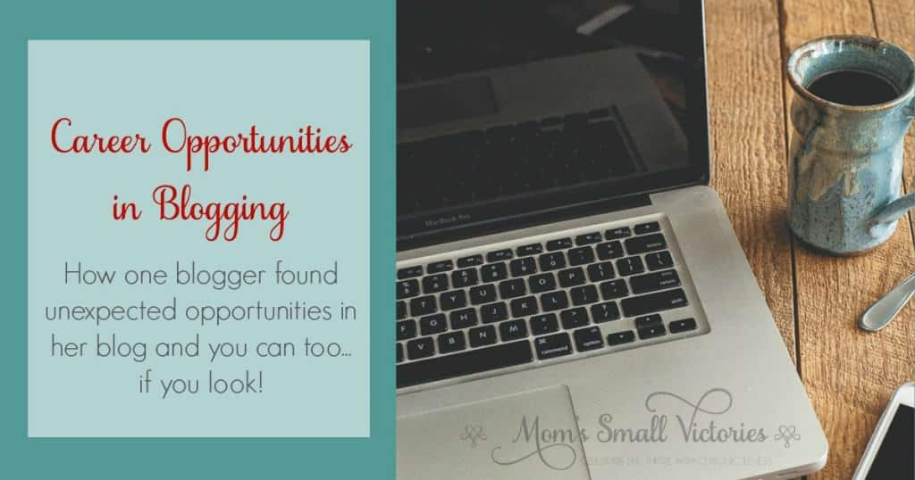 Career Opportunities in Blogging. How one blogger found unexpected opportunities in her blog and you can too...if you look!
