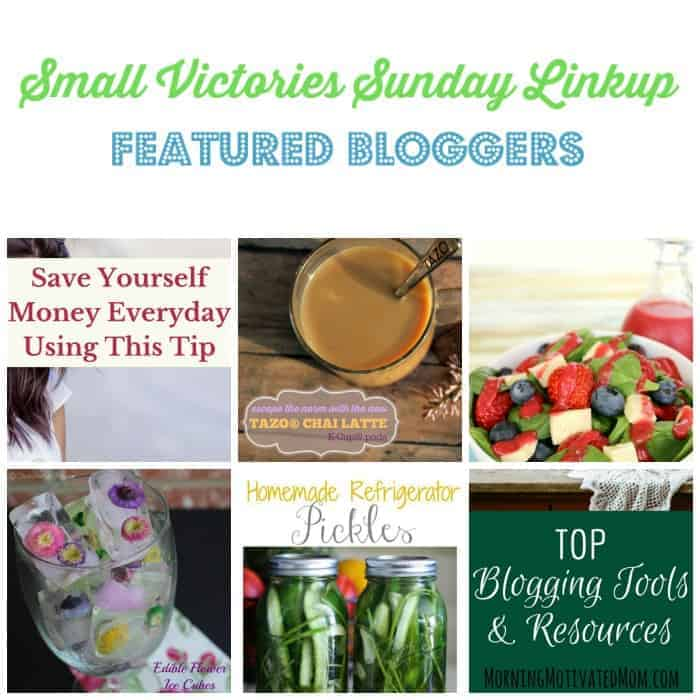 Small Victories Sunday Linkup 105 Featured Bloggers: Save Yourself Money Everyday by Tidbits of Experience, Coffee, Tea and Padma Lakshmi by The Made Mommy, Summer Berry Salad with Fresh Raspberry Vinaigrette by Fun Money Mom, Edible Flower Ice Cubes by O Taste and See, Homemade Refrigerator Pickles by Gluesticks and Top Blogging Tools & Resources by Morning Motivated Mom