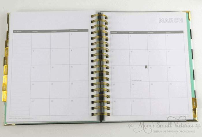 Day Designer planner review monthly calendar picture