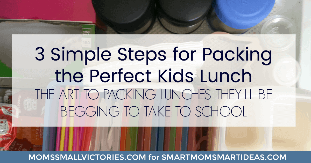 3 Simple Steps for Packing the Perfect Kids Lunch....the art to packing lunches they'll be begging to take to school. Break out of the boring sandwich box and grab some easy, new ideas to give your kids healthy, delicious lunches they will love to take to school.