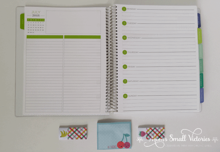 Inside The Plum Paper Planner July 2018 to June 2019 Horizontal Weekly Planner, one of the prizes in the Ultimate Planner Comparison + Giveaway. Get all the details on the 11 best life and goal planners on the market to find the best planner for you in your current season of life.