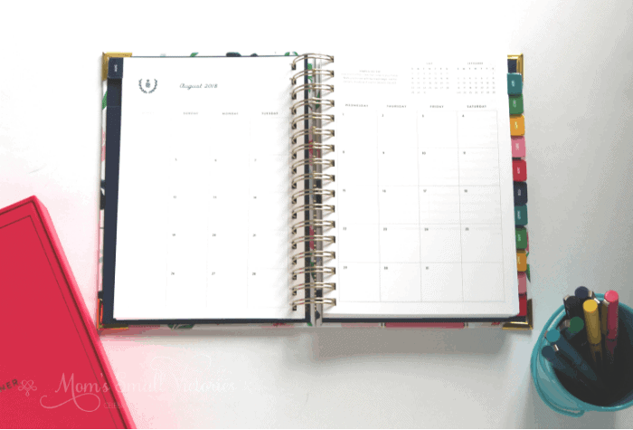 Simplified Planner Daily 2018-2019 Monthly Calendar, Emily Pilot Precise Pen set in a bucket and fuschia Keepsake Box