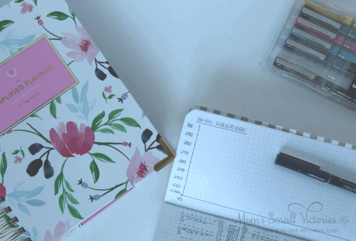 Simplified Planner Daily 2018-2019, Pink Star Webster's Pages graph paper notebook email subscribers graph, and Emily Ley Pilot Precise Pen Set