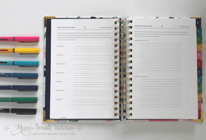 Simplified Planner Daily 2018-2019 Weekly and Daily Routines and Emily Ley Pilot Precise Pen Set