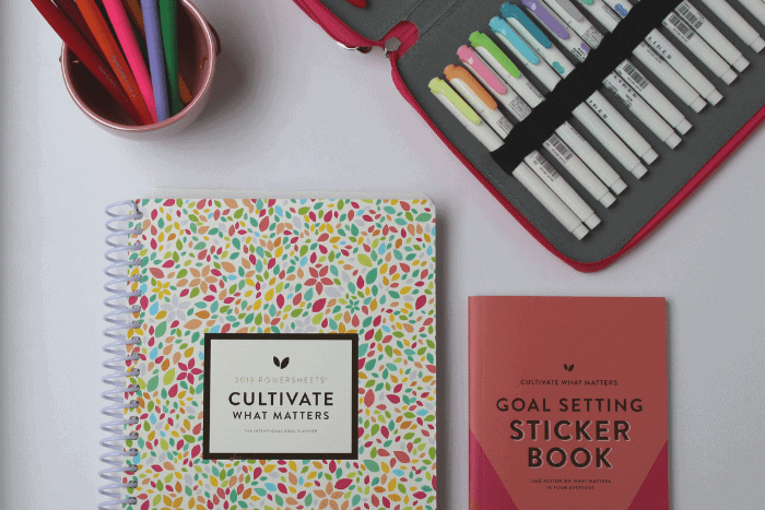 powersheets 2019 intentional goal planner and must have accessories including goal setting sticker book, papermate flair pens and zebra midliner highlighters