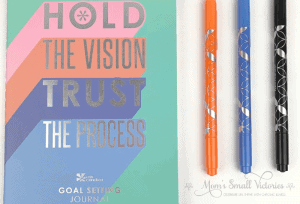 erin condren goal setting journal and orange black blue dual tip markers