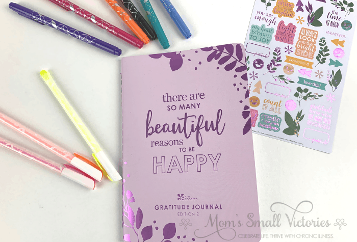 erin condren gratitude journal purple cover stickers and pens
