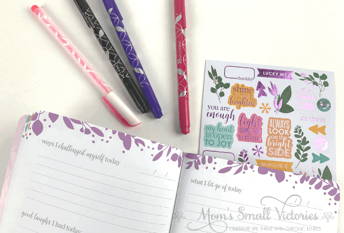 erin condren gratitude journal sneak peek stickers and pens