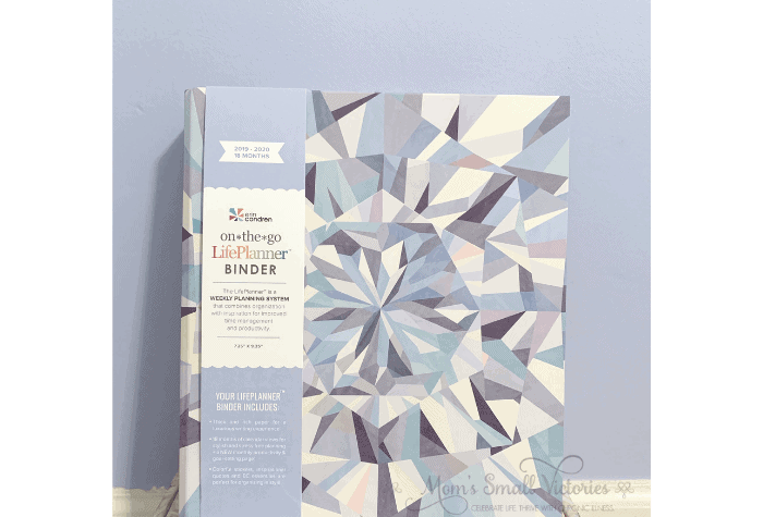 The Erin Condren Life Planner Binder in the neutral kaleidoscope is gorgeous and sturdy to hold the 18 months of weekly pages.