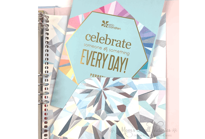 The pocket and perpetual calendar in the Erin Condren Life Planner Binder in the neutral color scheme.