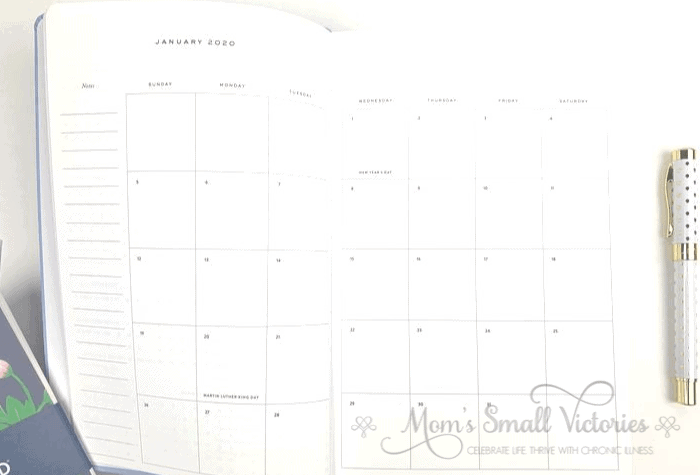 The Dapperdesk Planner Review 2020. The monthly calendar layout in the Dapperdesk planner. The monthly calendars are a Sunday start and all 12 months are together in the front of the planner.